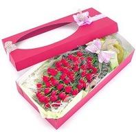 꽃상자 장미와소재