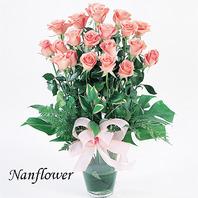 핑크화병꽃